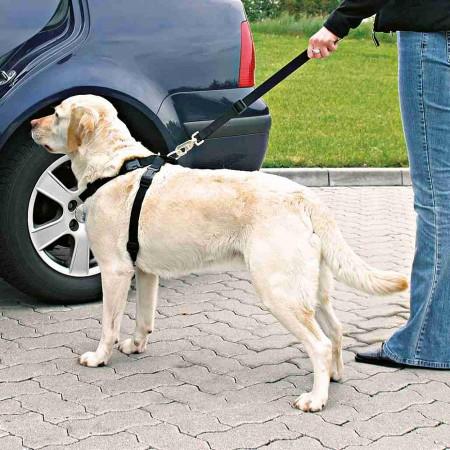 Trixie Car Harness Автомобильная шлея для собак L