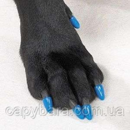 Антицарапки для кошек и собак (размер M) ограничено БЕЗ КЛЕЯ