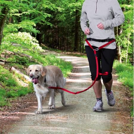 Trixie (Трикси) Waist Belt with Leash поводок с поясом для бега с собаками средних и крупных пород
